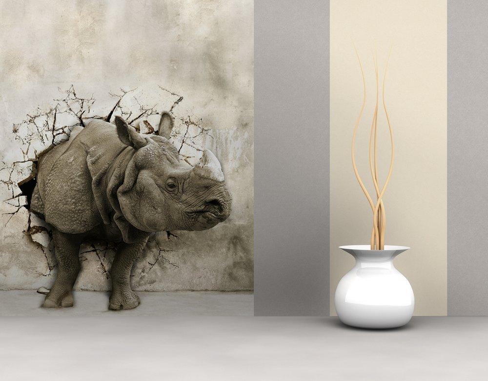 Фотообои носорог