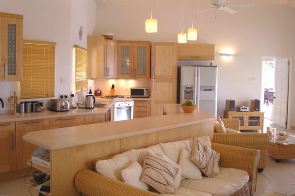 Кухня гостинная с диваном