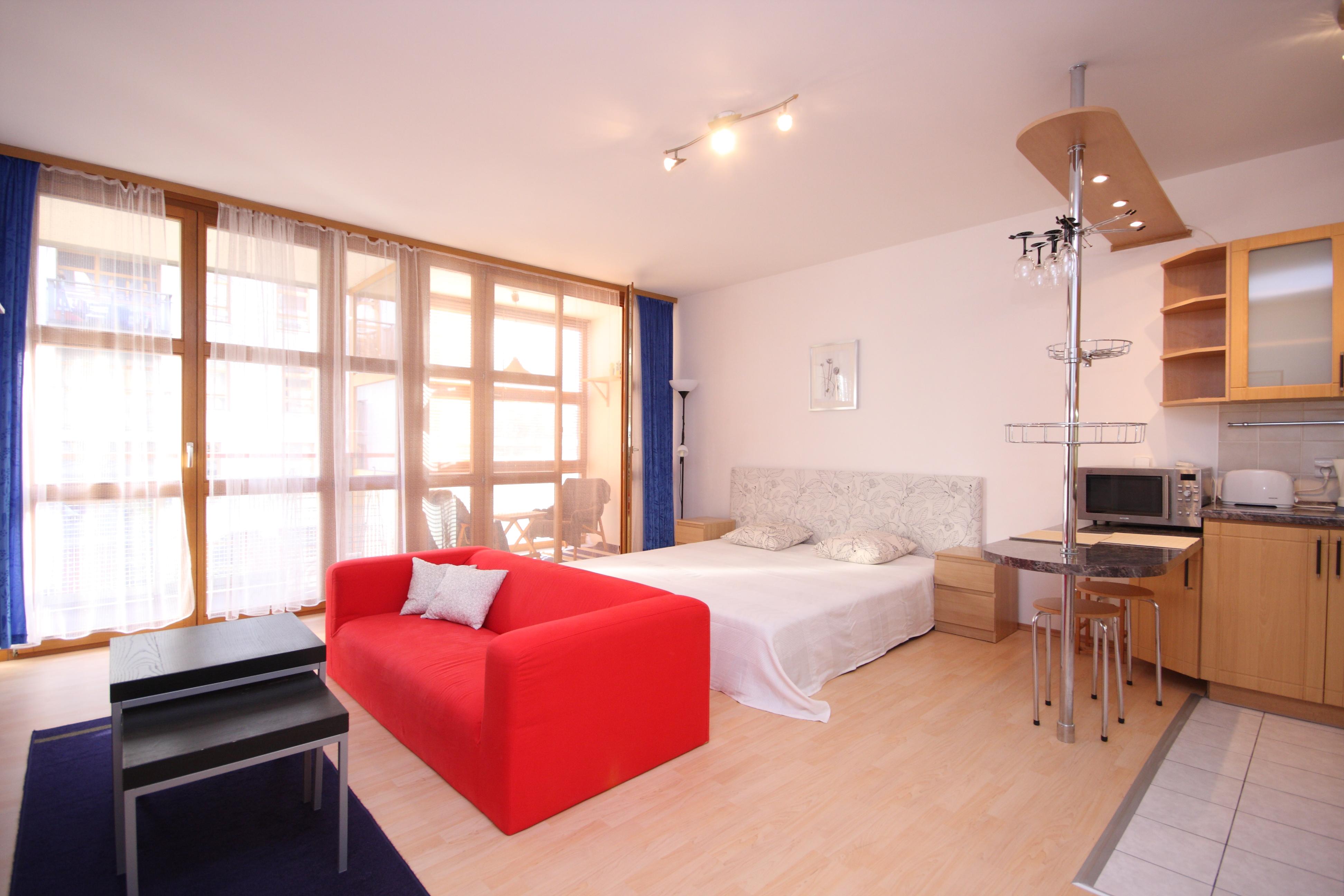 Обстановка однокомнатной квартиры в лаконичном дизайне
