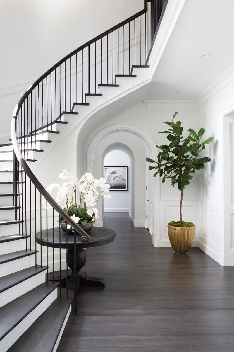 Зеленые растения в интерьере коридора