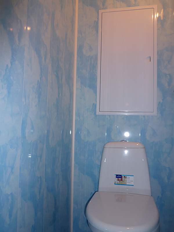 Туалет голубой