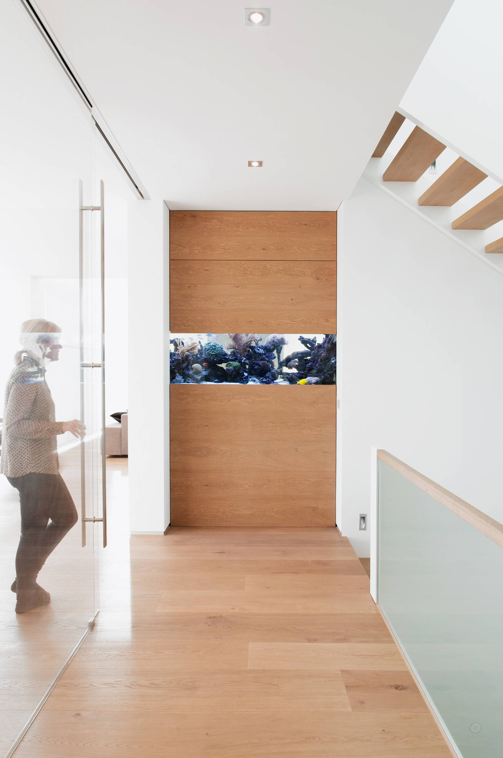 Ремонт коридора с аквариумом если в доме кошка