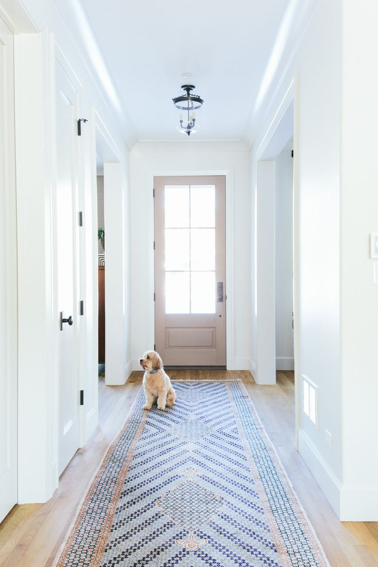 Оформление коридора дорожкой при собаке