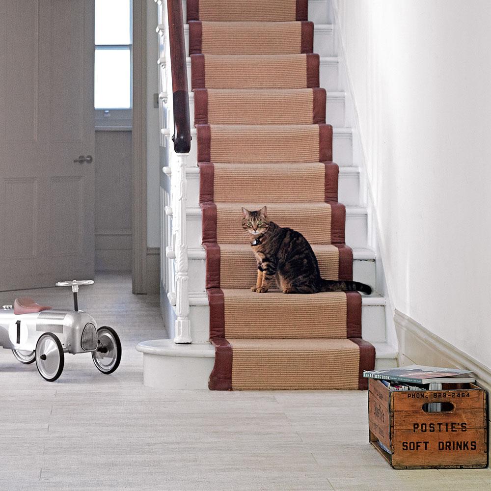 Оформление коридора ковриком если в доме кошка
