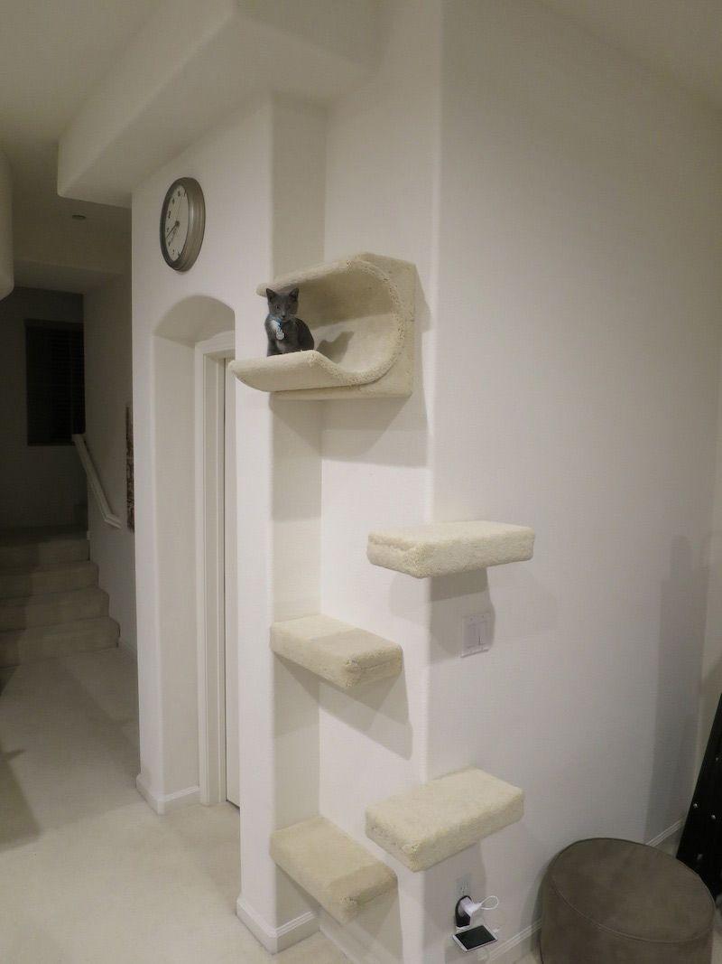 Оформление угла коридора при кошке