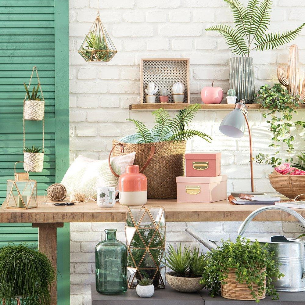 Декоративные растения в интерьере