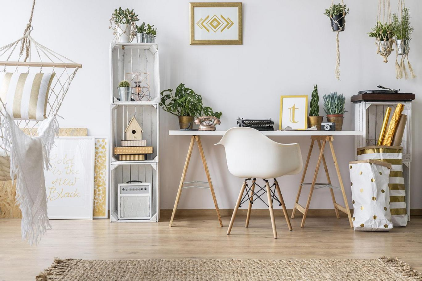 Комнатные растения в кабинете