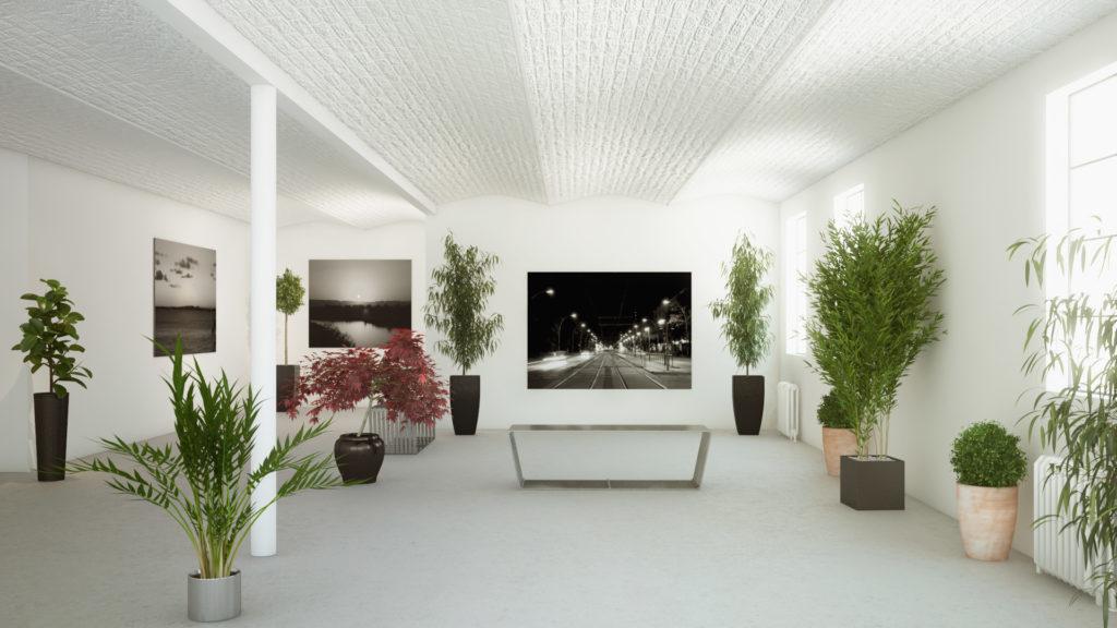 Выставочное пространство с живыми комнатными растениями