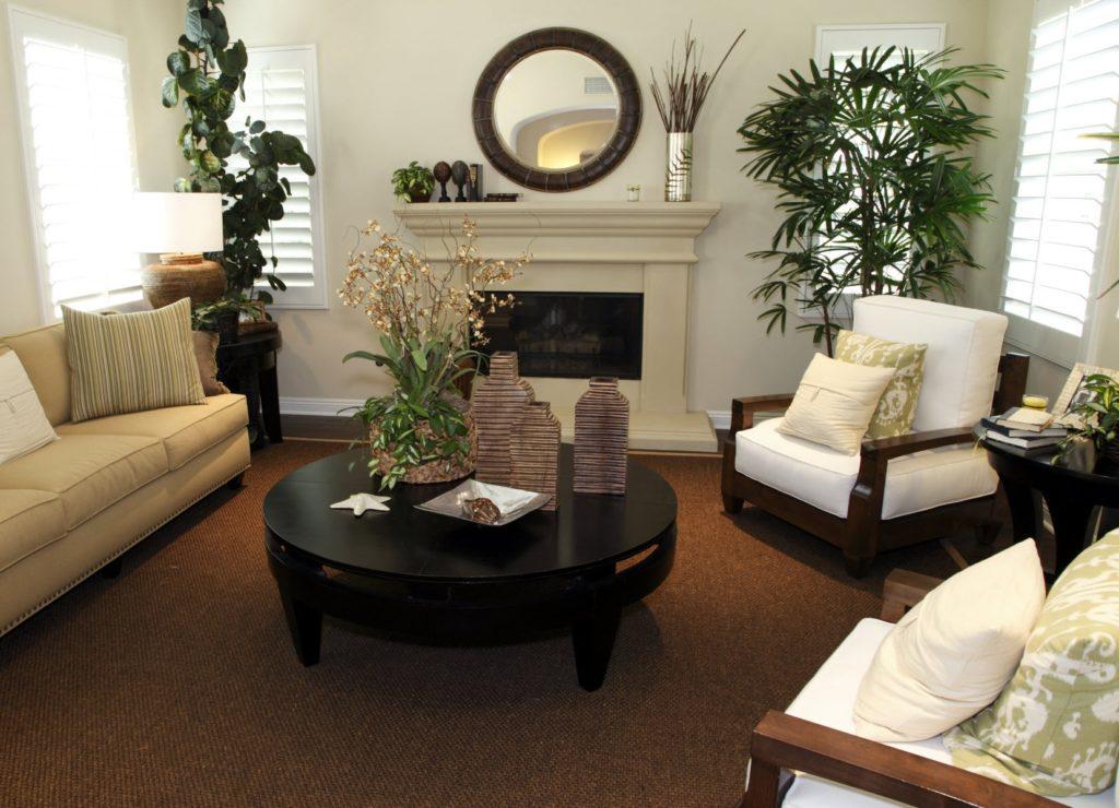 Гостиная, украшенная разными живыми растениями