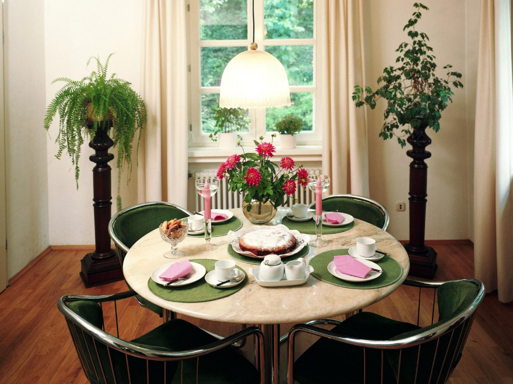 Комнатные живые цветы в столовой