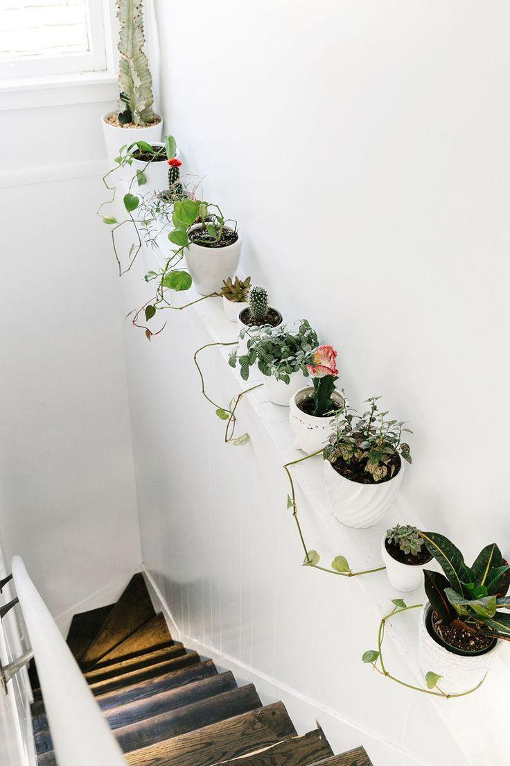 Комнатные растения в декоре лестницы