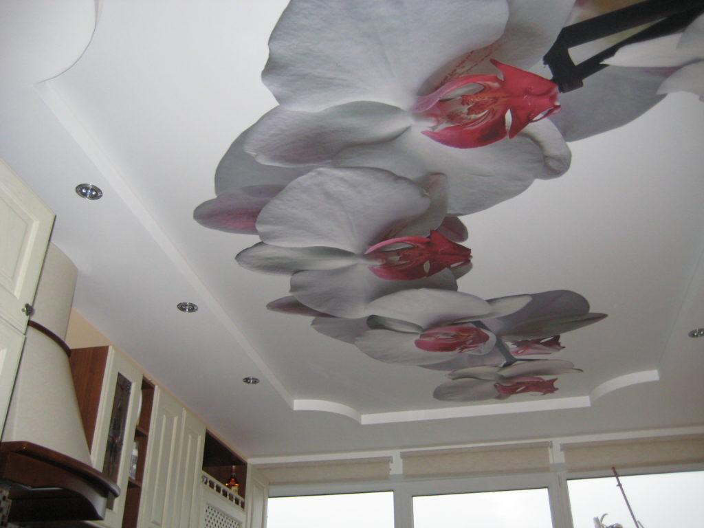 Белый матовый натяжной потолок на кухне с орхидеями