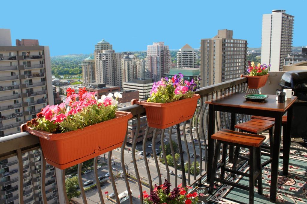 Цветы идеальны для оформления балкона