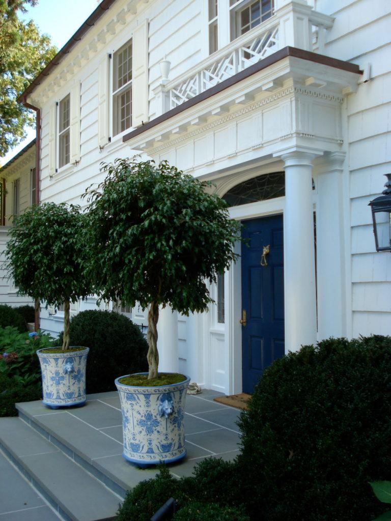 Деревья на крыльце дома