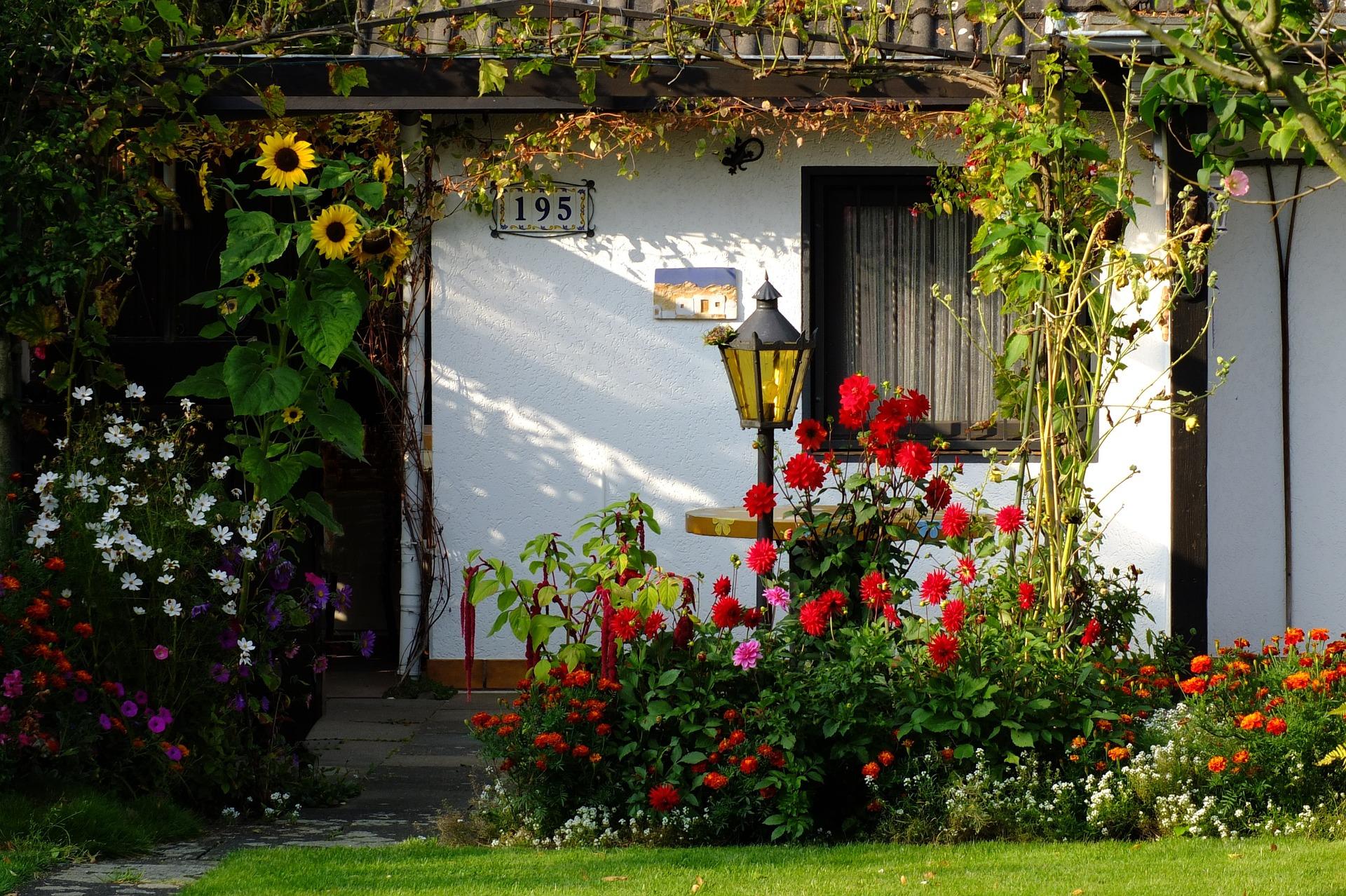 Клумба перед домом