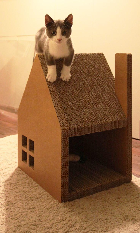 Домик для кошек из склеенного картона