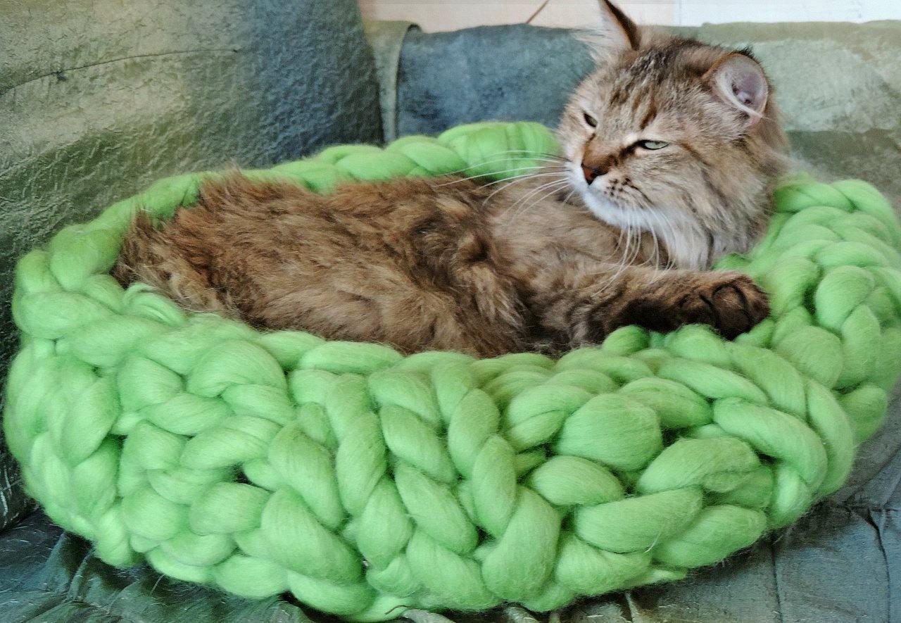 Зеленая вязаная лежанка для кошек