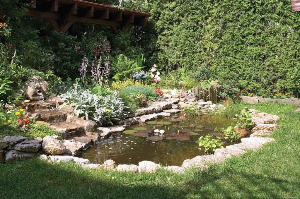 Небольшой садовый пруд с водяными клумбами