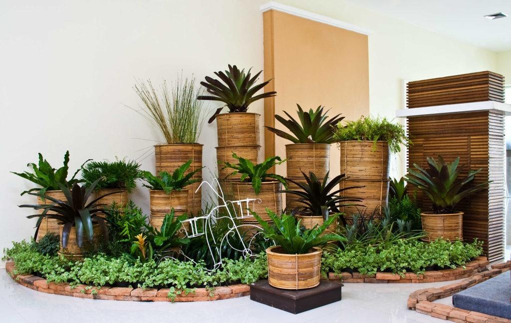 Если позволяет площадь, то можно устроить большой домашний сад