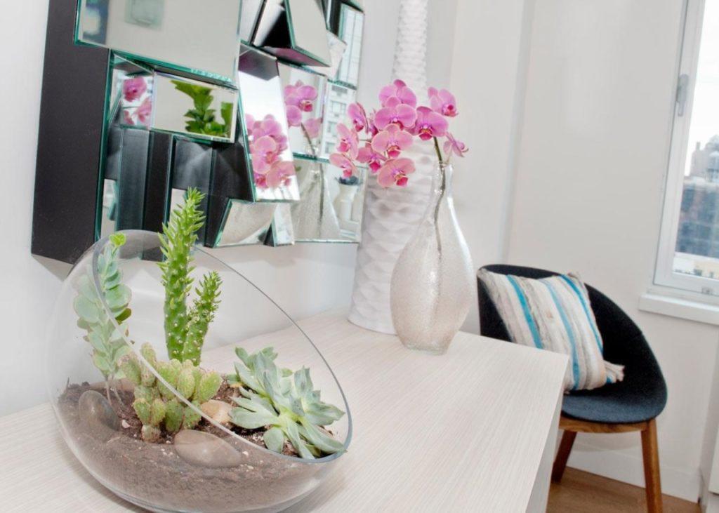 Комнатные растения в необычном горшке