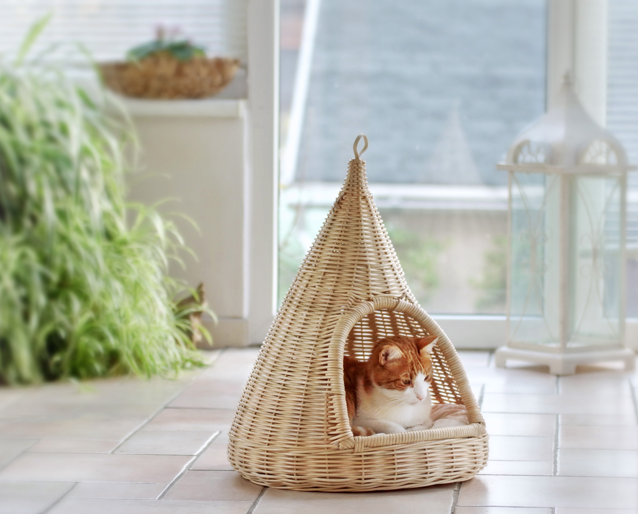 Домик для кошки плетеный