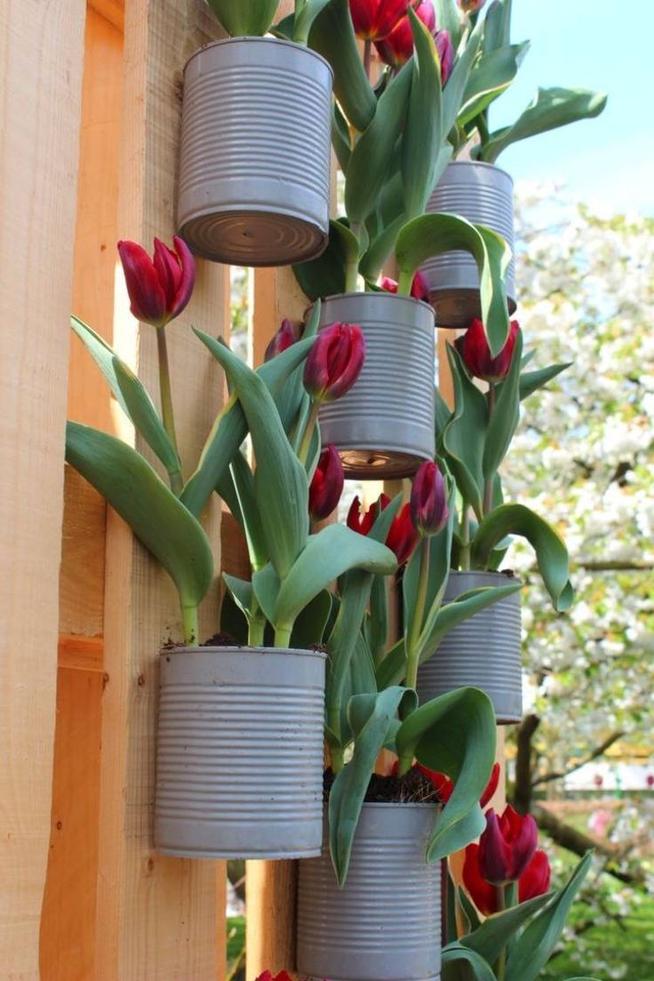 Оформление клумбы с тюльпанами в саду