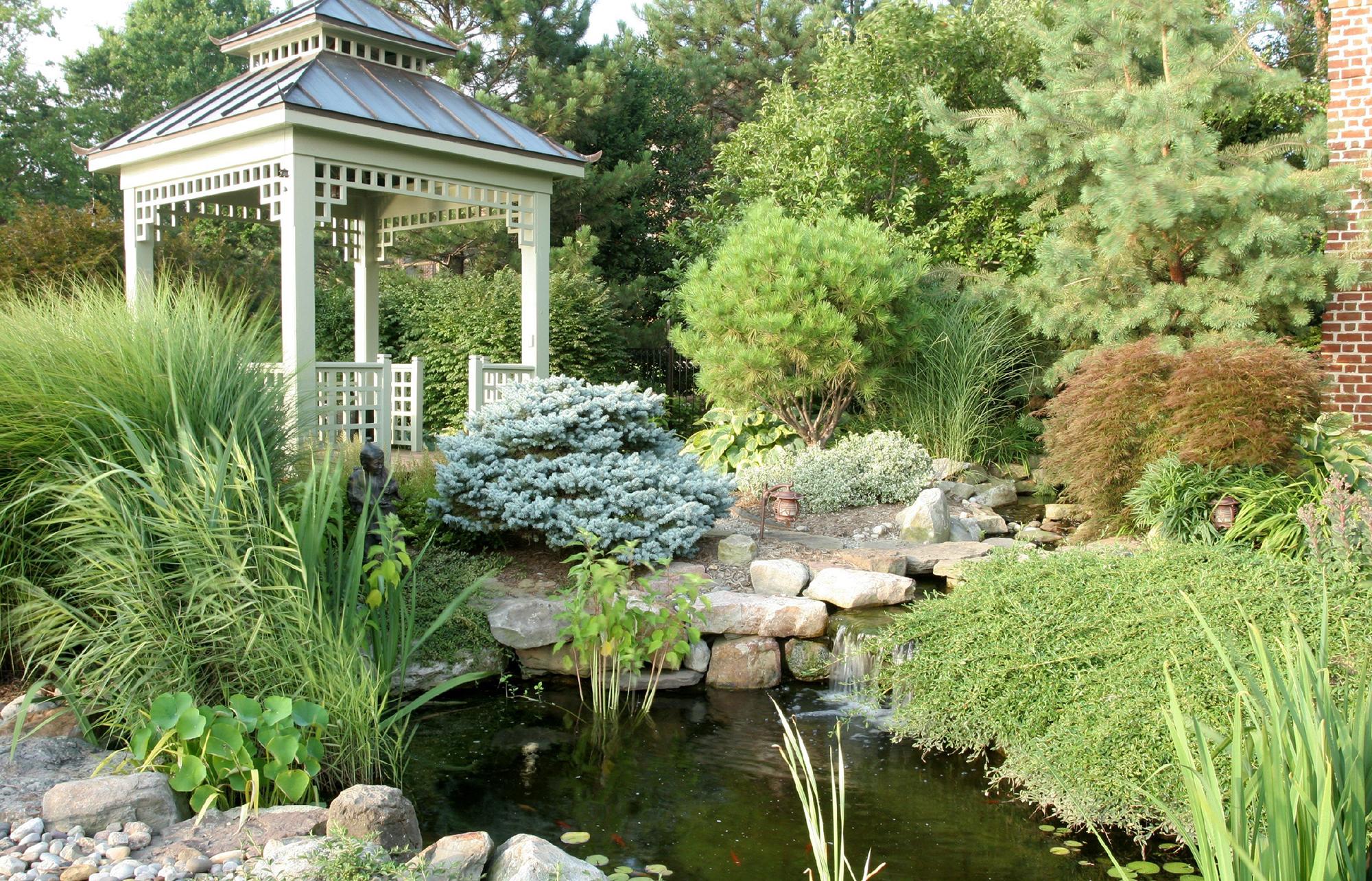 Красивая хвойная композиция в саду с беседкой в китайском стиле