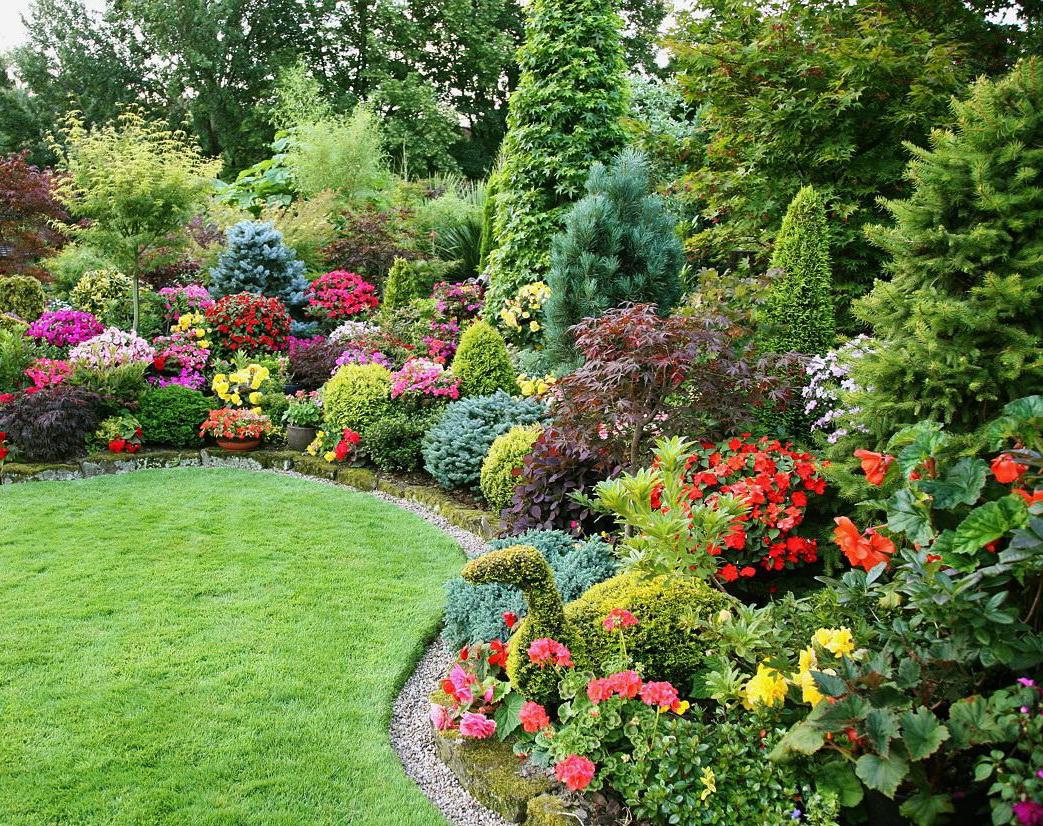 Роскошные кустарники и цветы на участке