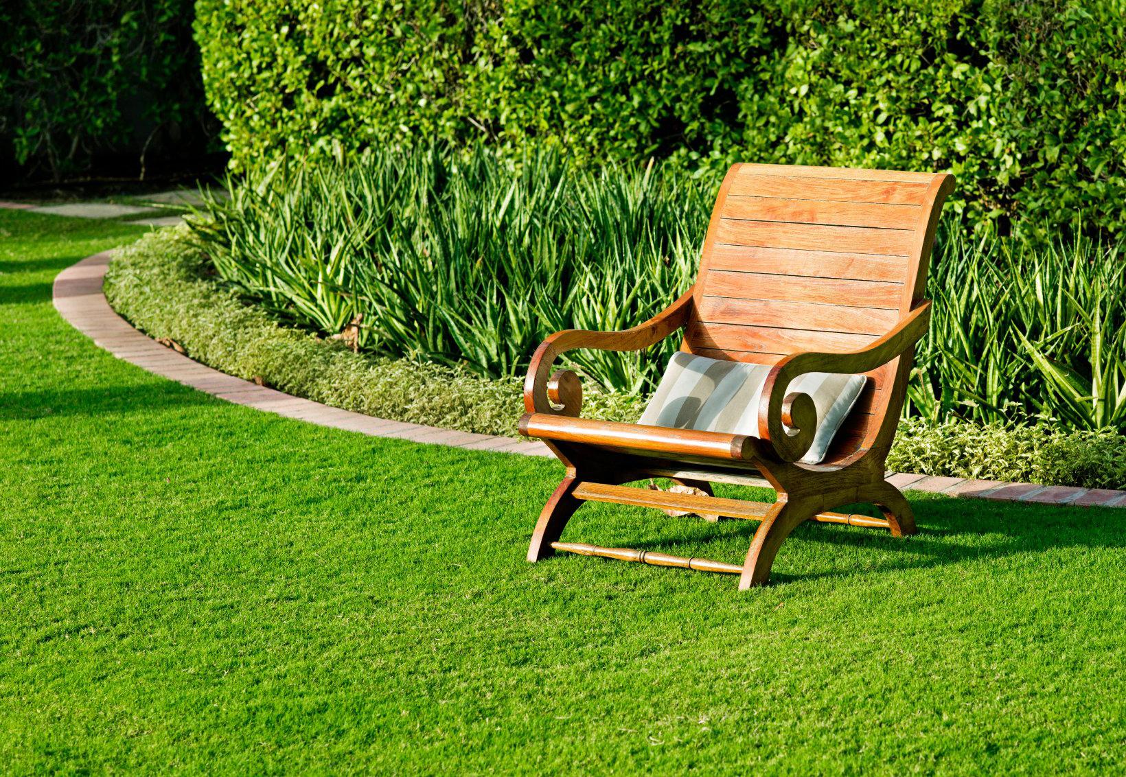 Газон на участке (17 фото): простое создание и озеленение