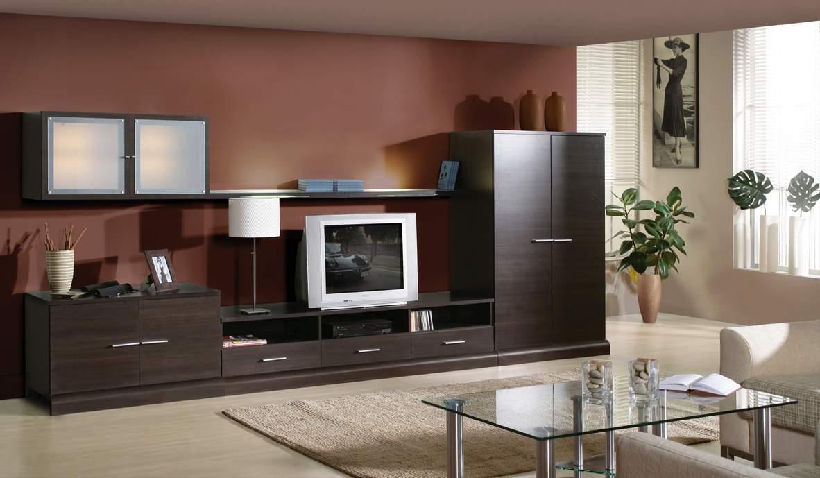 Темно-коричневая корпусная стенка в гостиной