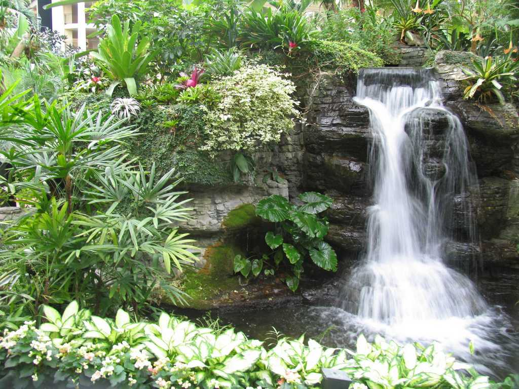 Водопад, украшенный растениями