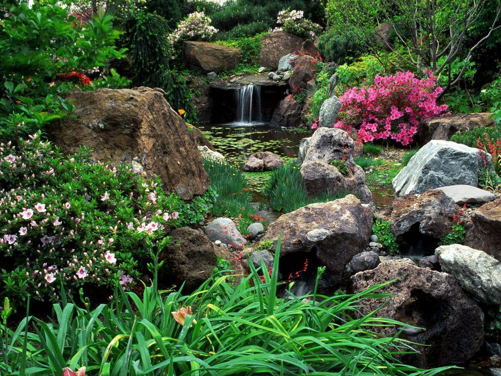 Водопад, пруд и цветы на участке