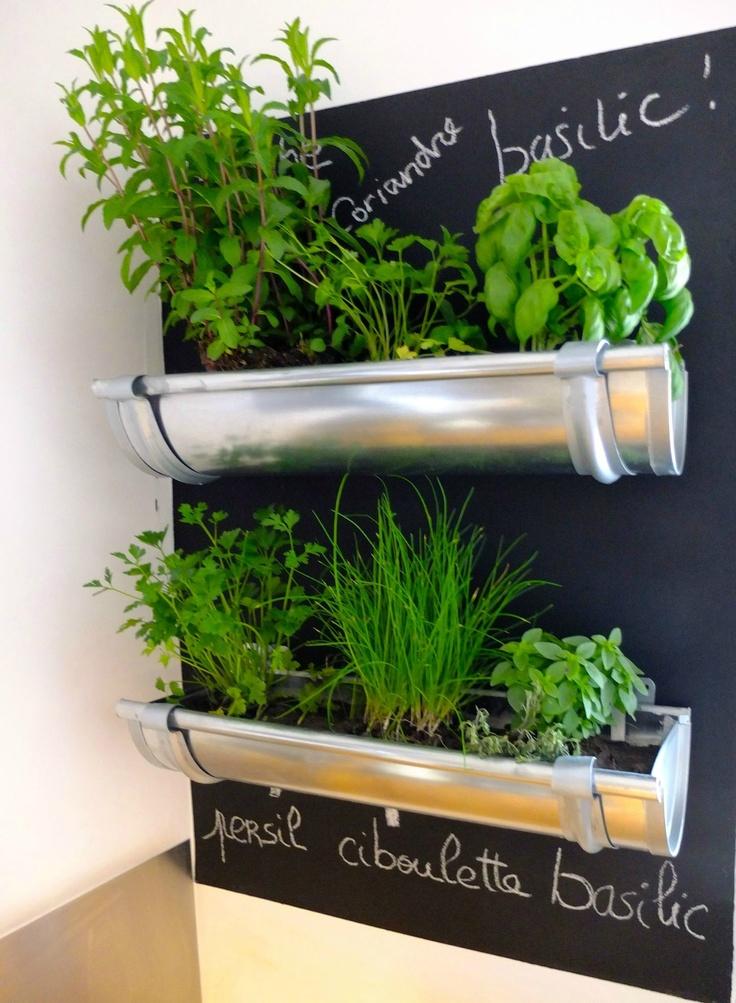 Меловая доска и растения на стене на кухне