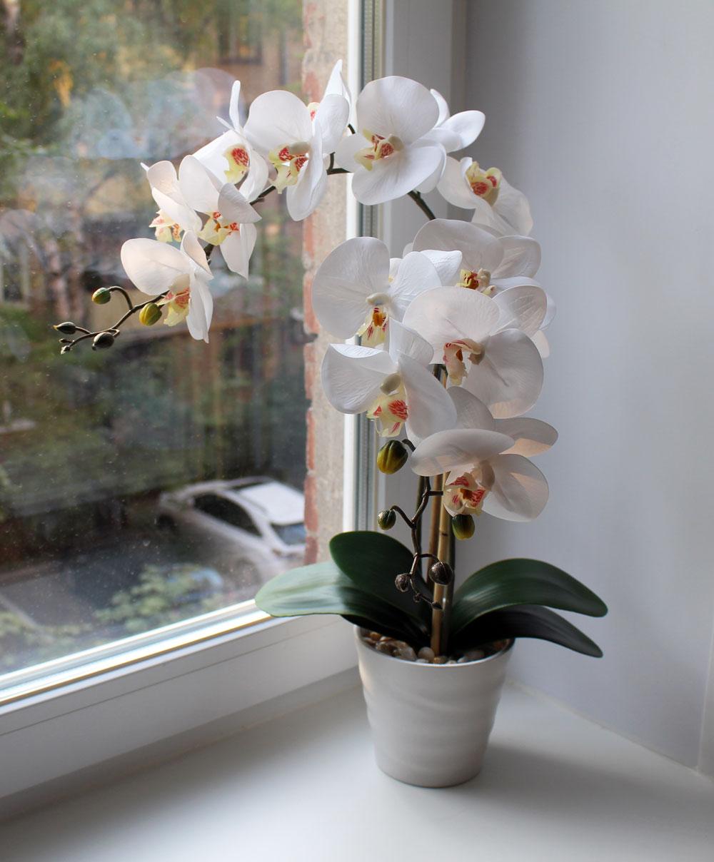 Искусственная орхидея на окне