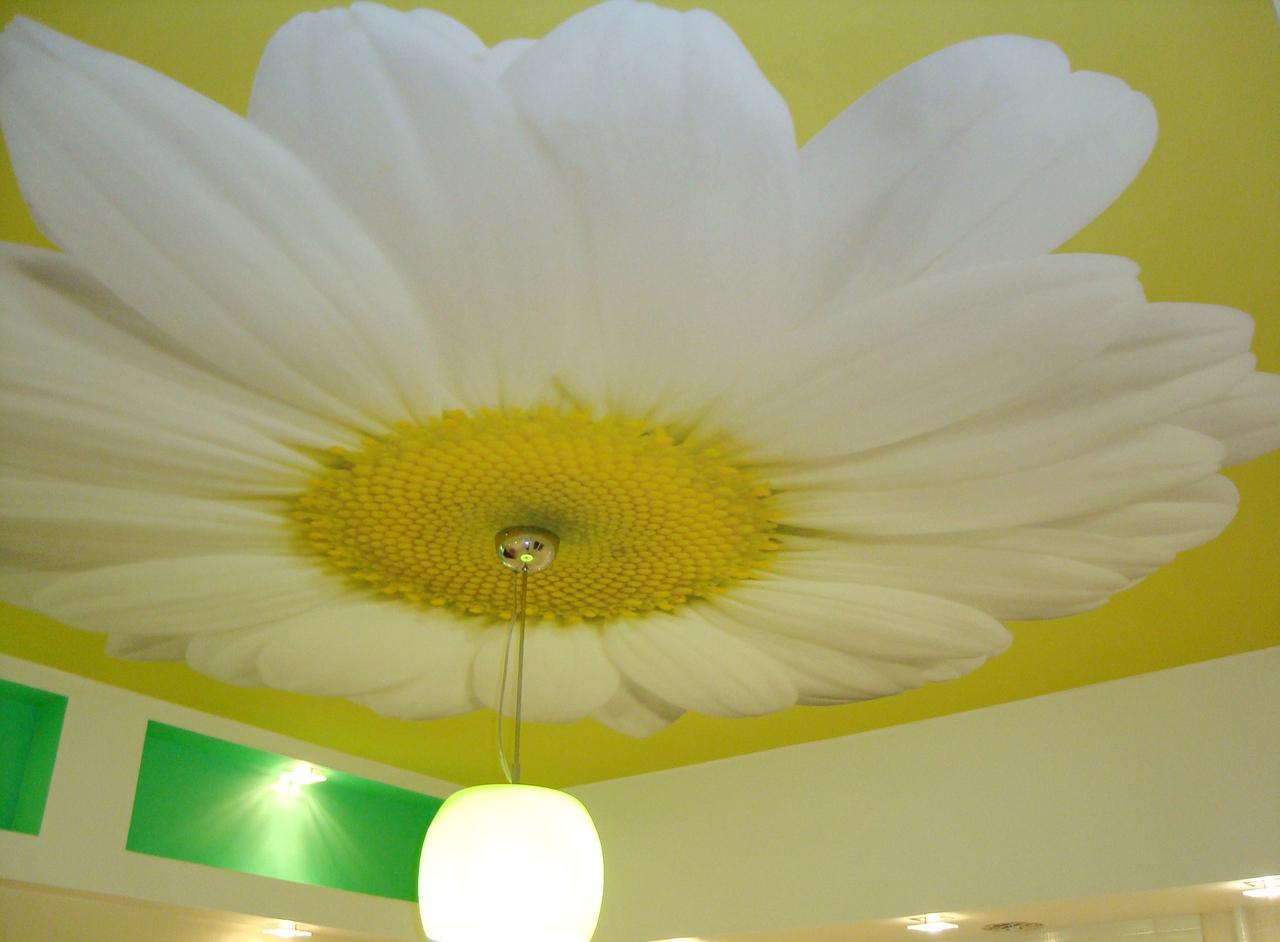 Тканевый натяжной потолок с ромашкой