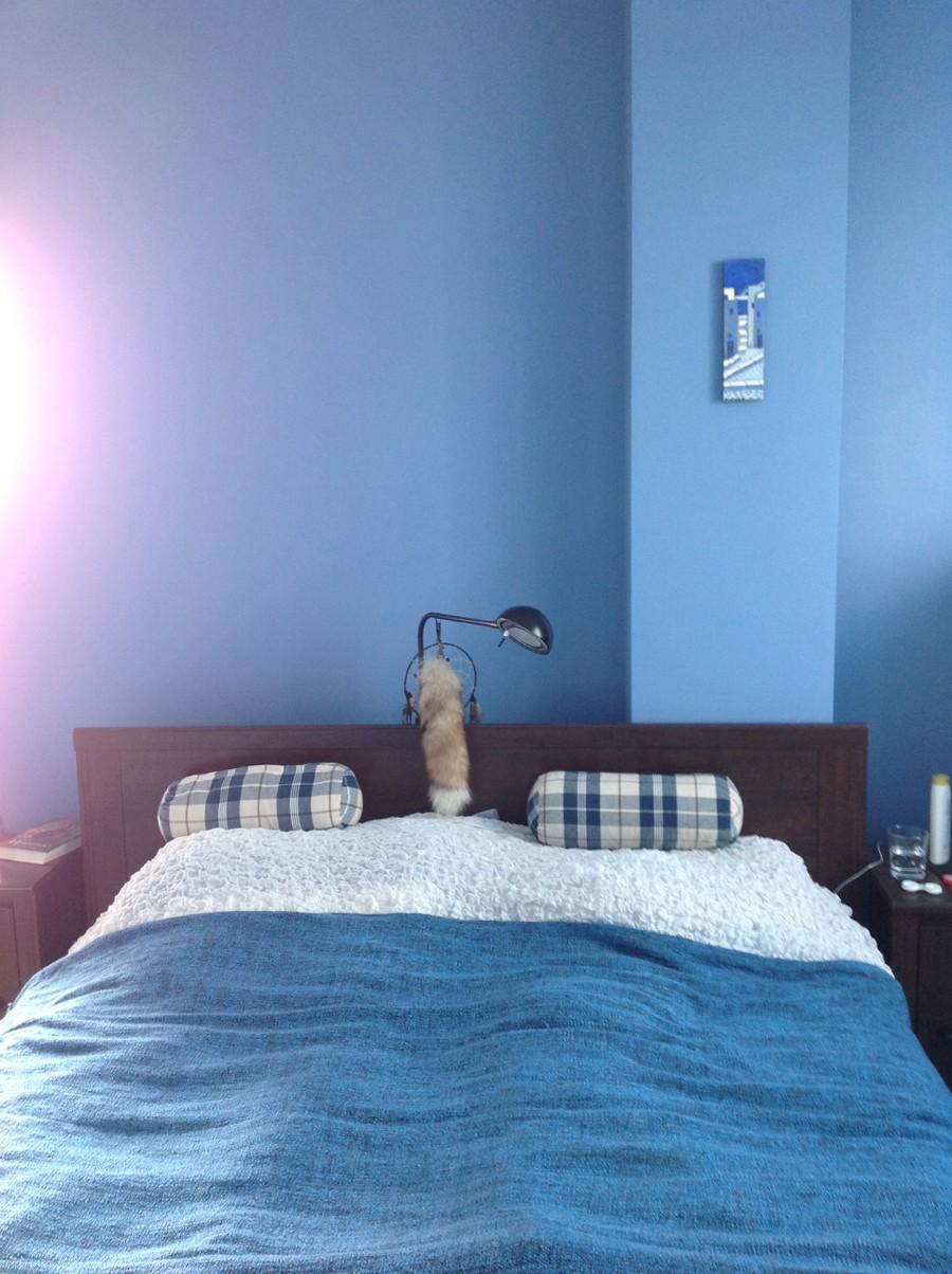Голубые однотонные стены и текстиль в спальне
