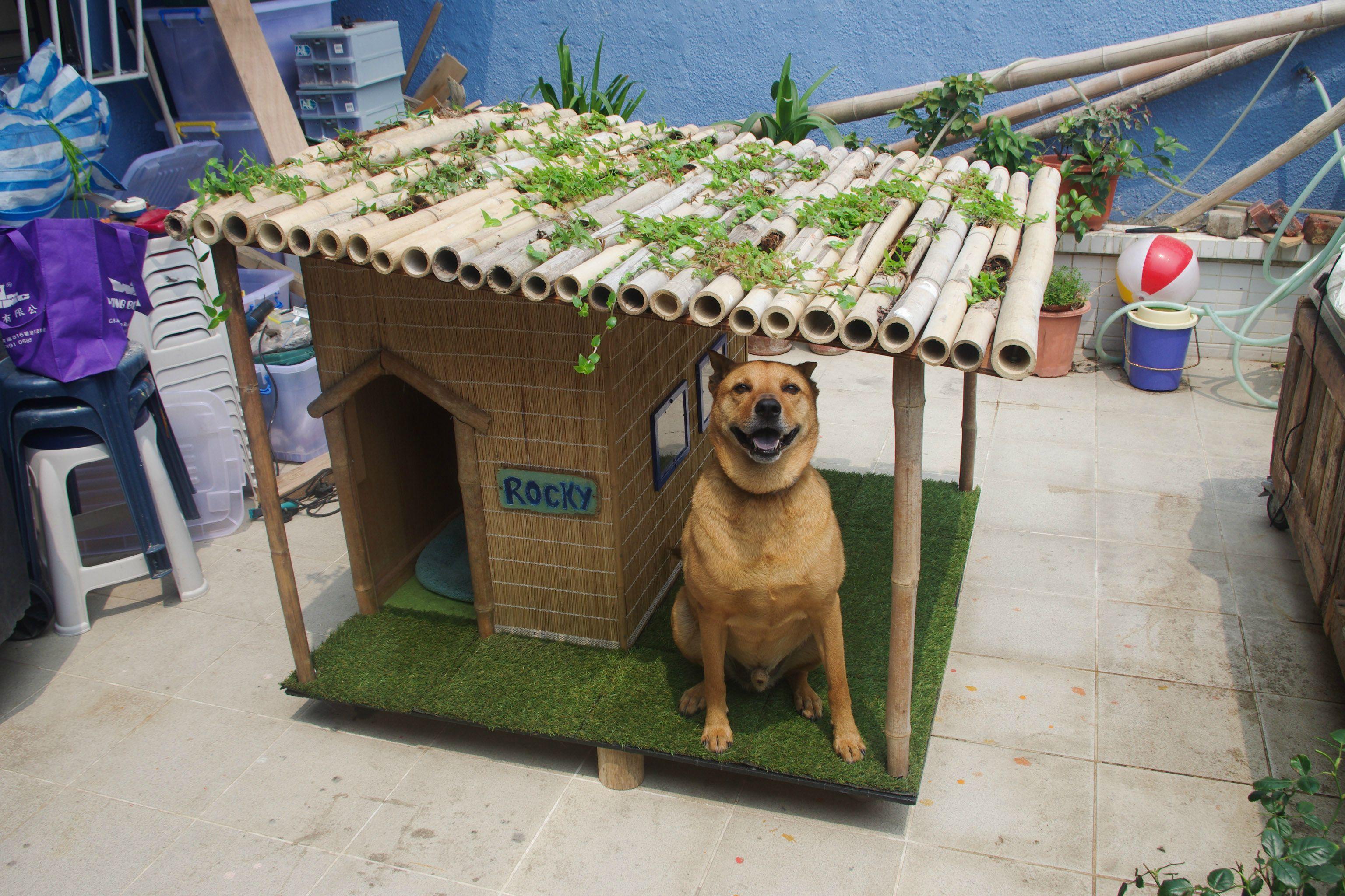Будка для собаки из бамбука
