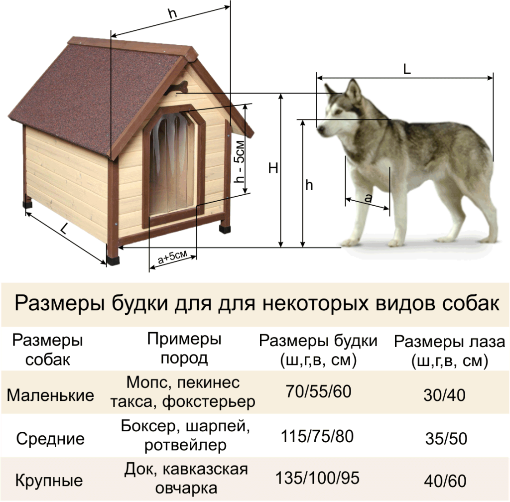 Примерные размеры конуры для собаки