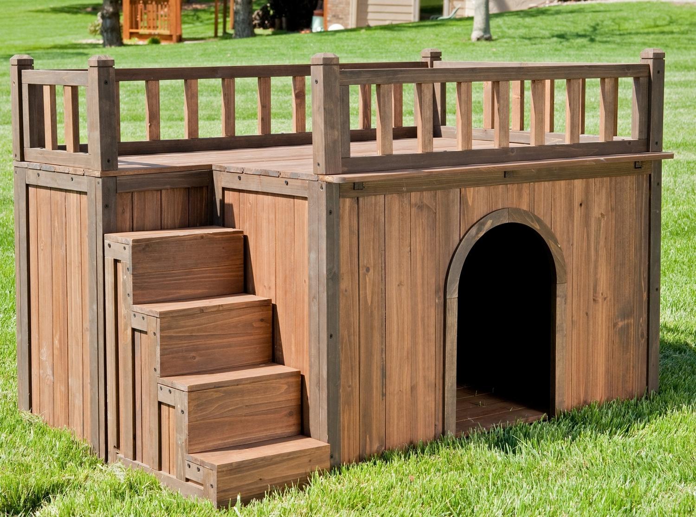 Будка для собаки с местом отдыха на крыше