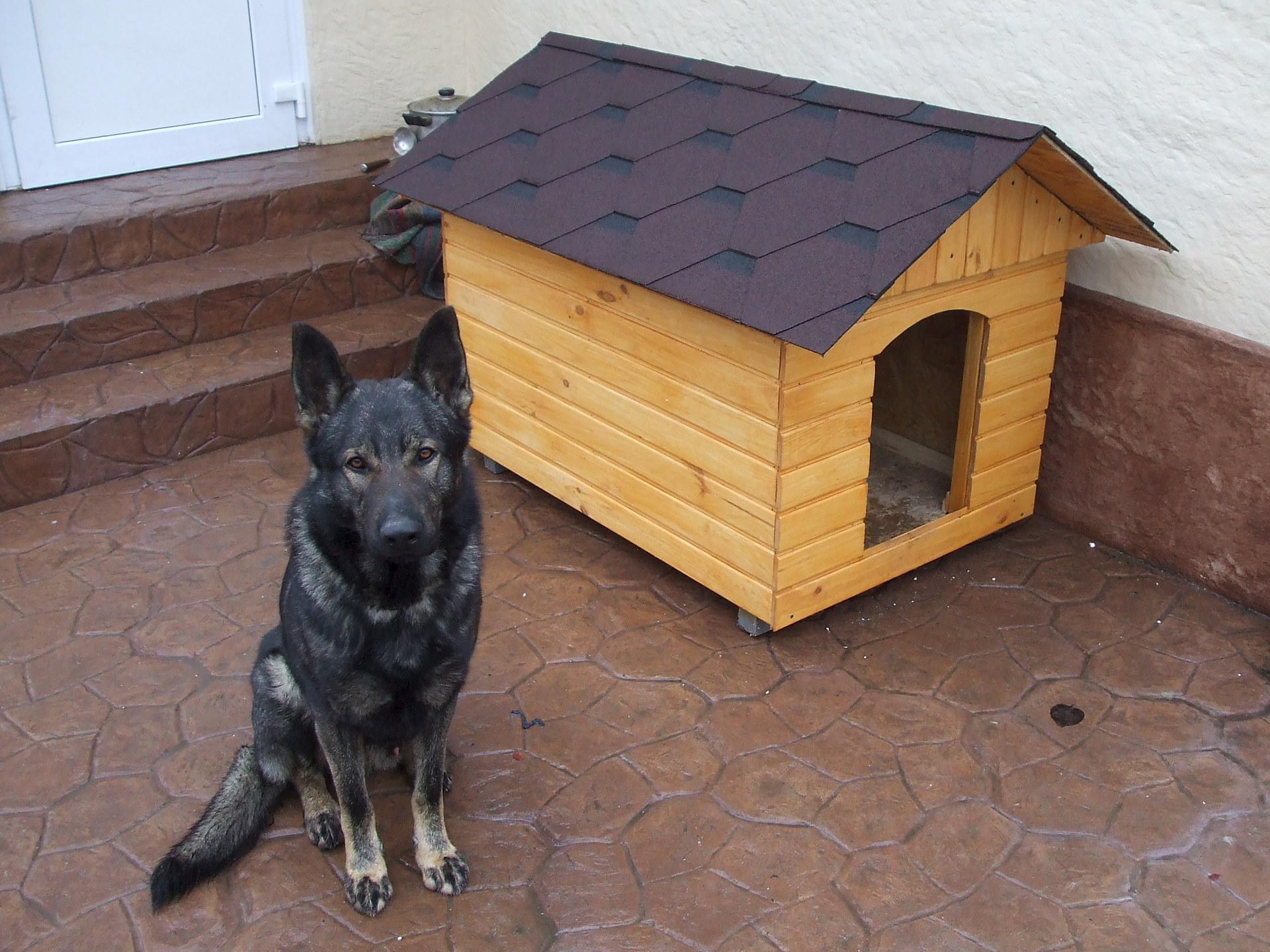 Будка для собаки с двухскатной крышей и вагонкой