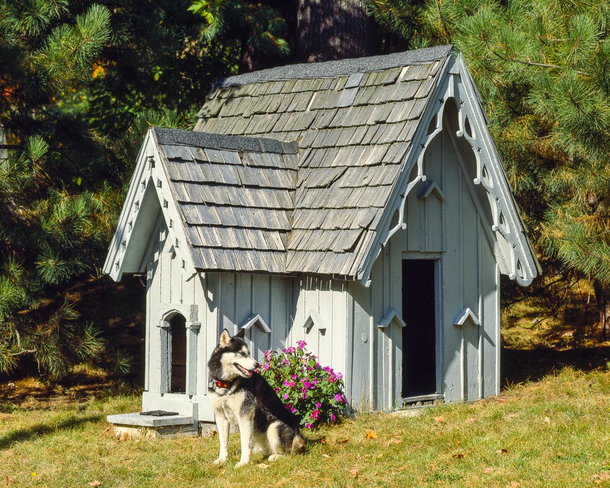 Будка для собаки домик