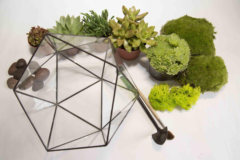 Необходимые предметы для создания флорариума