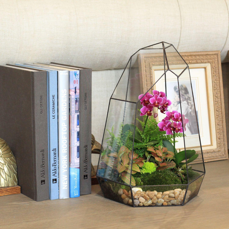 Флорариум с орхидеей в интерьере дома