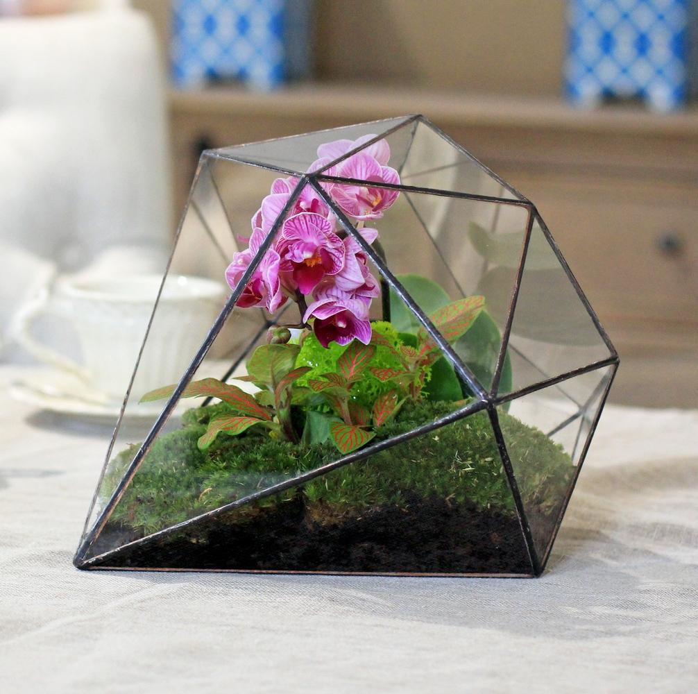 Оригинальный флорариум с орхидеей