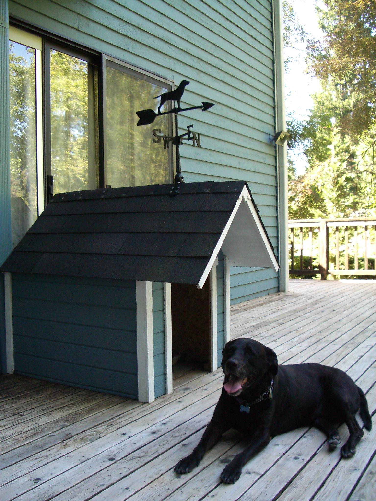 Будка для собаки с флюгером
