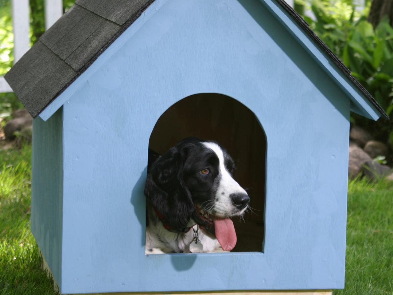 Будка для собаки голубая