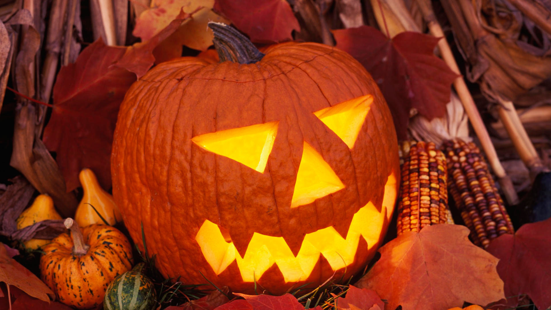 Пример, как можно вырезать тыкву на Хэллоуин