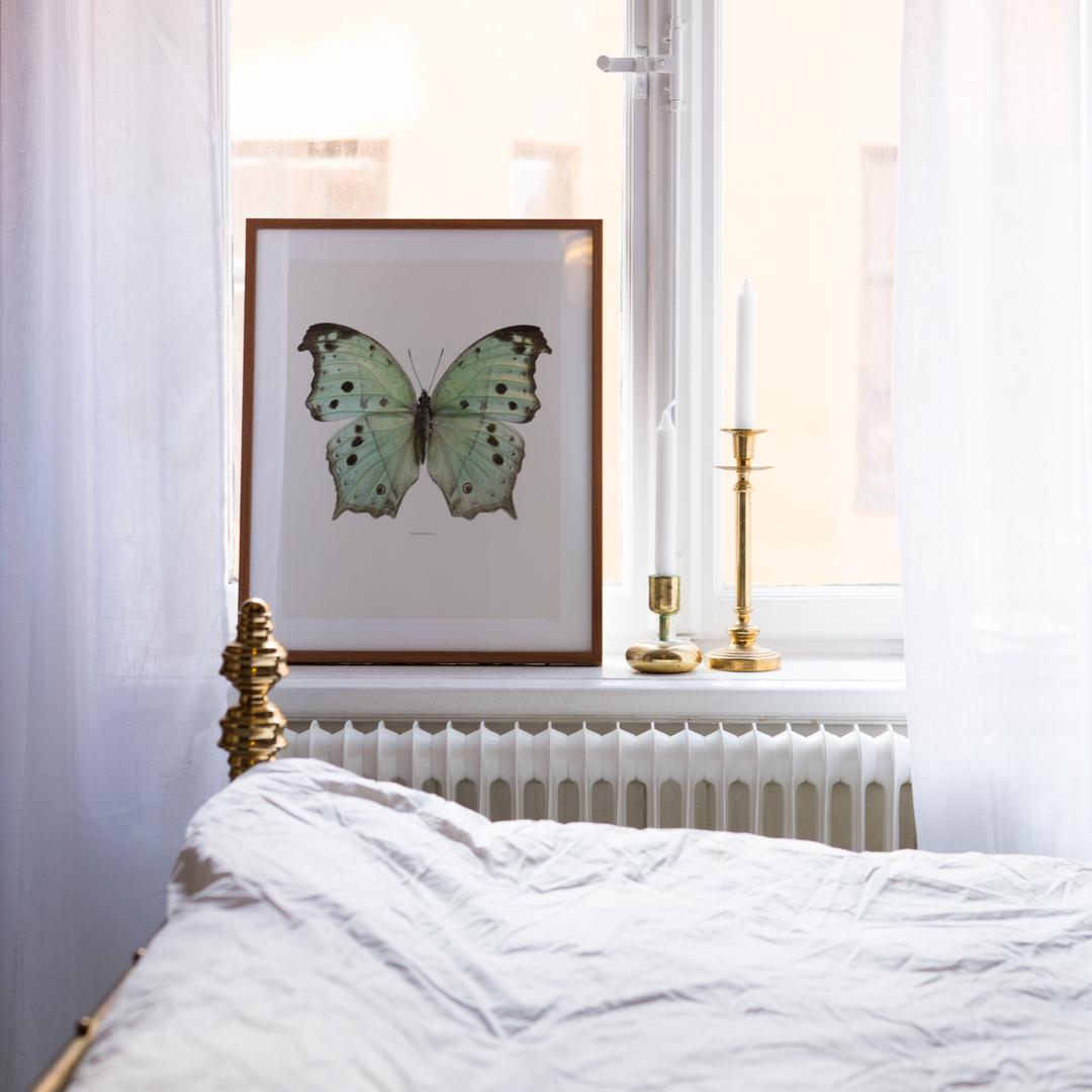 Бабочка на картине в интерьере