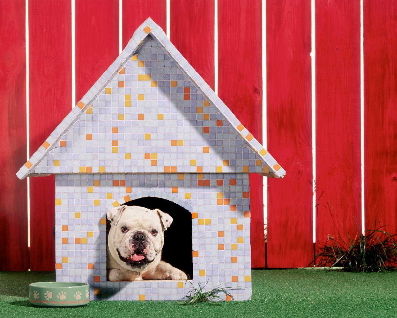 Будка для собаки отделка