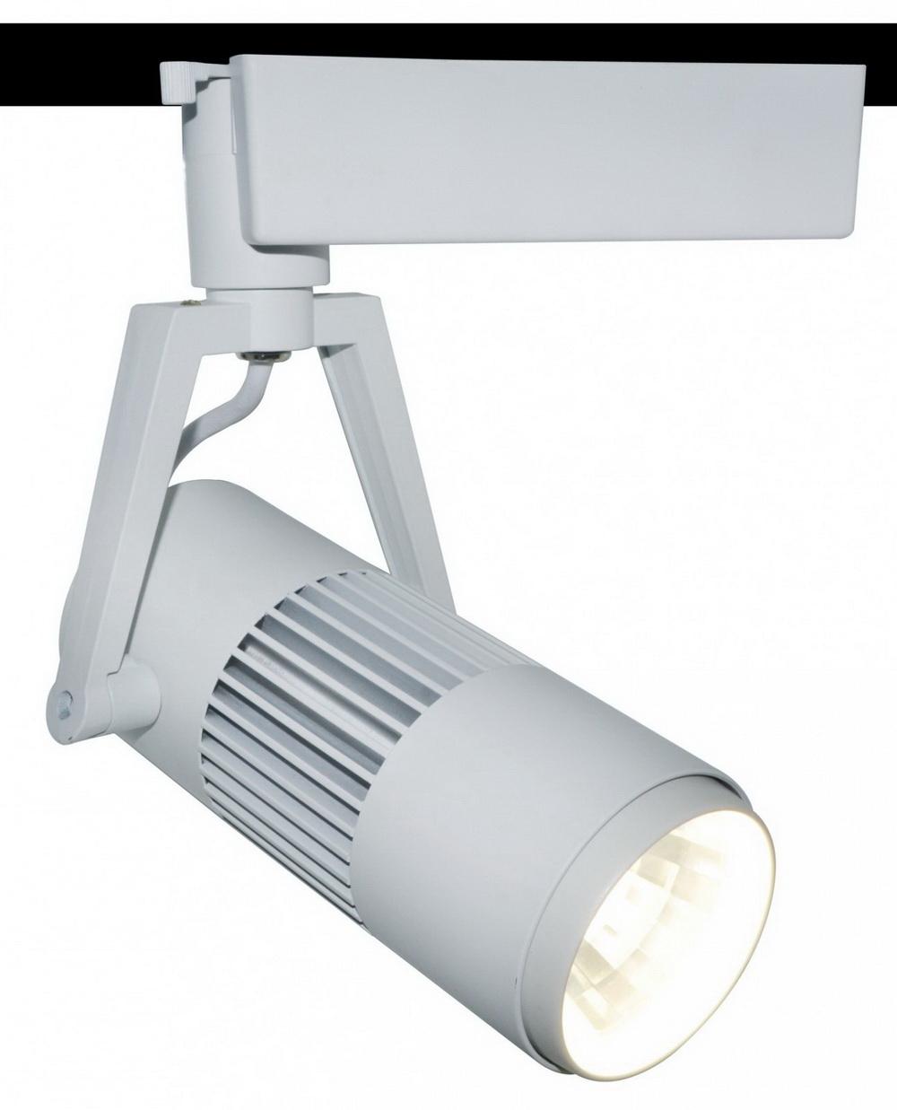 Направленный светильник